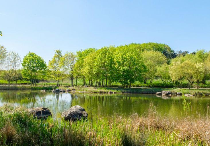 Parcs et jardins faites le plein de nature - Parcs et jardins de paris ...