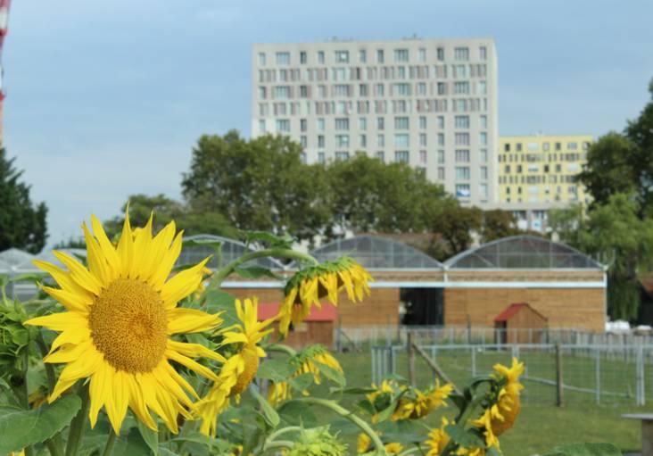 agriculture-urbaine-grand-paris-nord-plaine-commune-seine-saint-denis