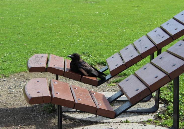 Parc Georges Valbon La Courneuve