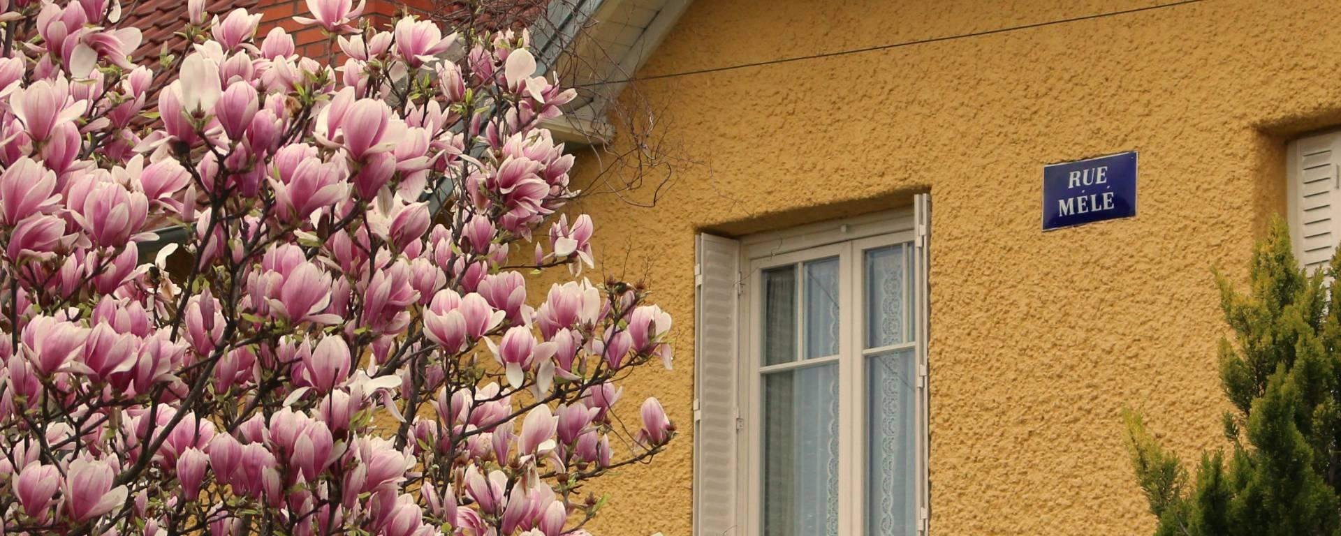 Maison colorée de la cité-jardin de Stains