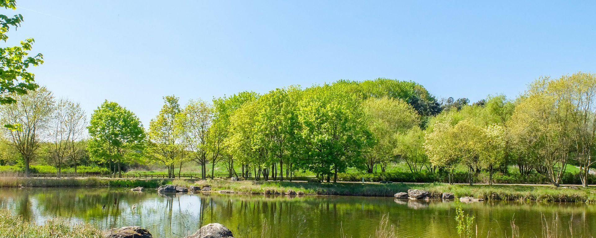George Valbon Park- © Mary Quincy