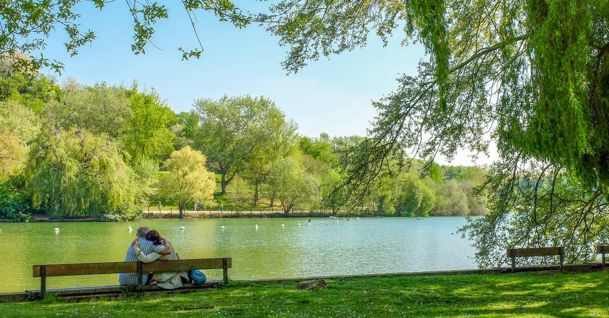 Parcs et jardins de plaine commune grand paris for Entreprise parc et jardin