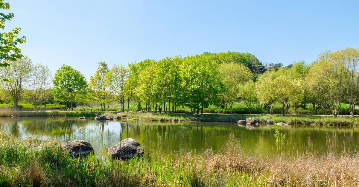 Parcs et jardins office de tourisme de plaine commune grand paris - Office tourisme saint denis ...