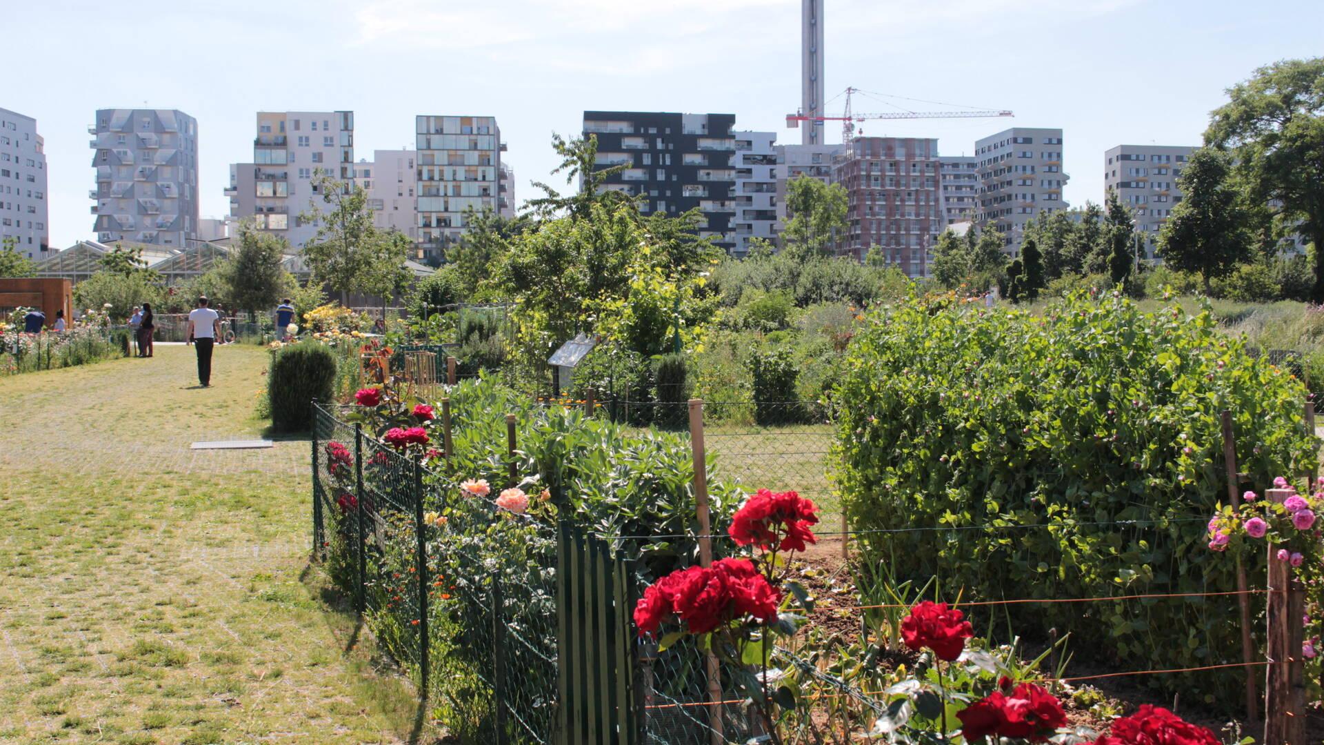 Grand Parc Saint-Ouen - Office de tourisme Plaine Commune Grand Paris
