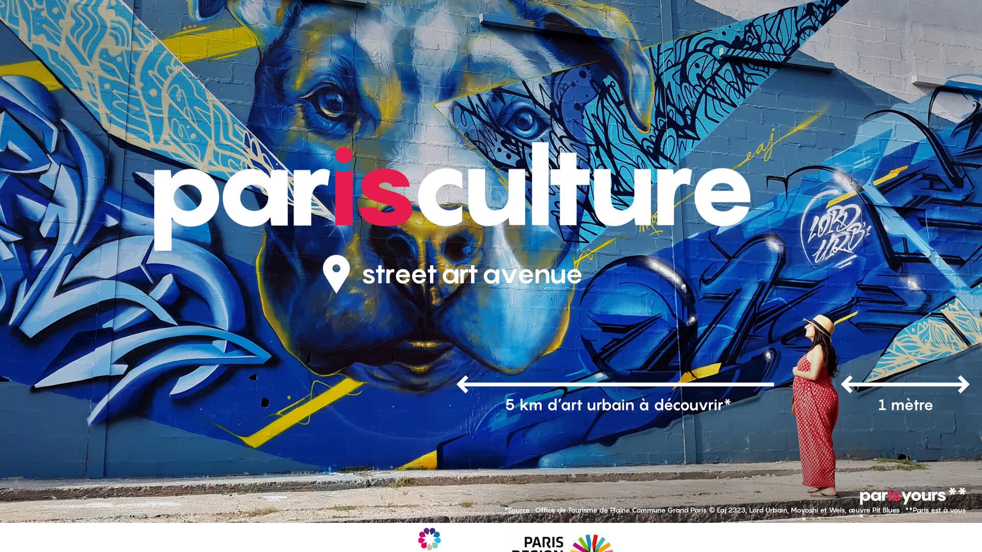street-art-avenue-aubervilliers-seine-saint-denis
