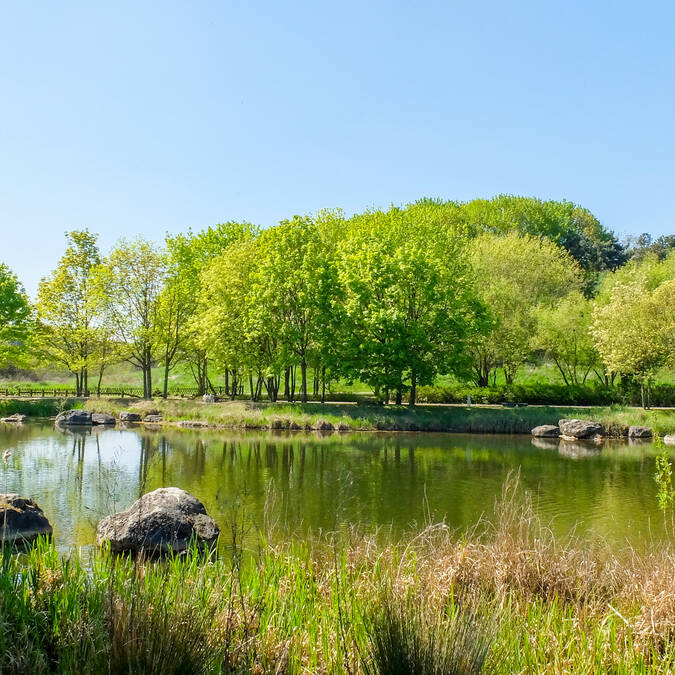 Parc Georges Valbon - La Courneuve
