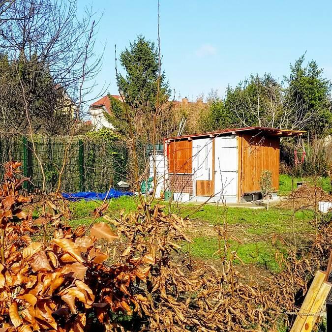 jardin-partagé-Stains